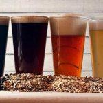 Un punto de vista equilibrado en relación a la cerveza